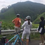 bike tour to a green tea farm