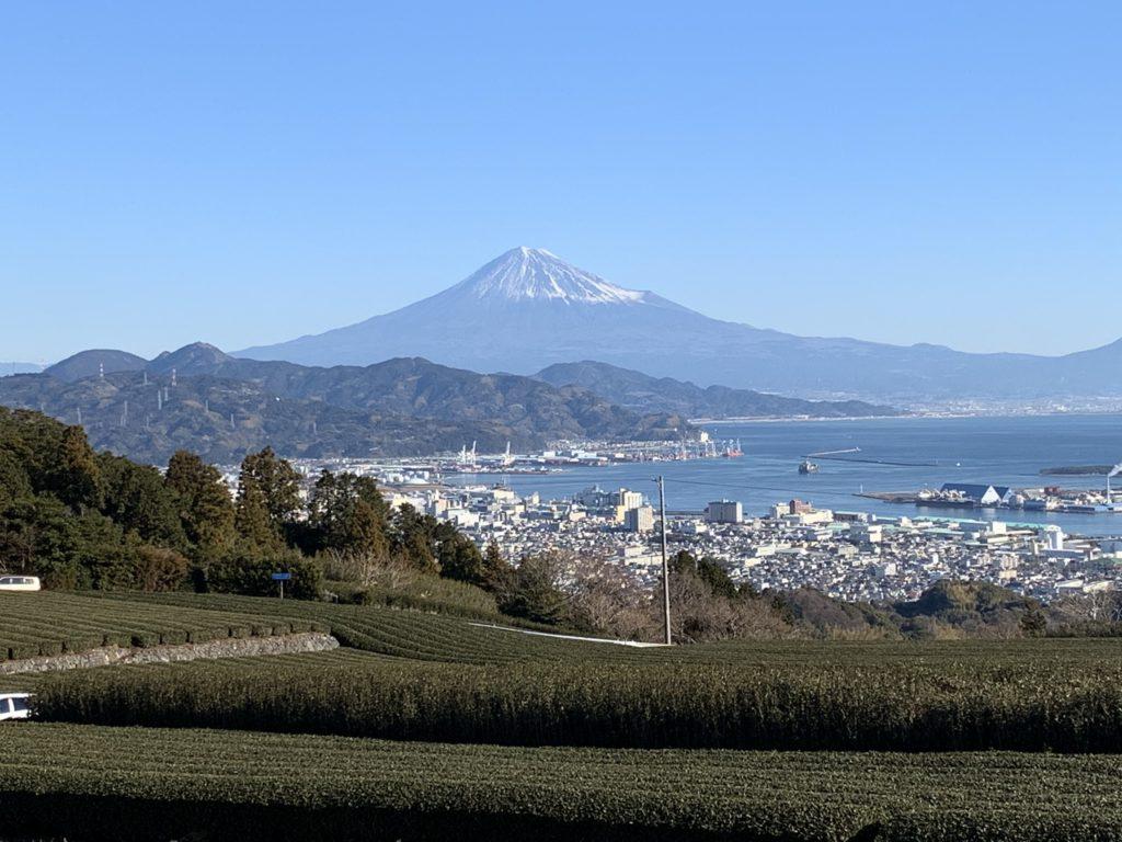 Nihondaira green tea fields