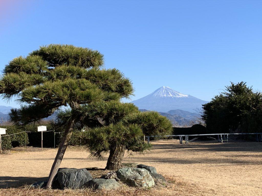 The garden of Nihondaira Ocha Kaikan