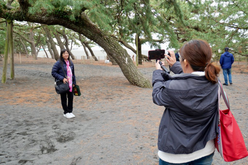 Miho no Matsubara (Miho Pine Tree Grove) Mt. Fuji World Heritage