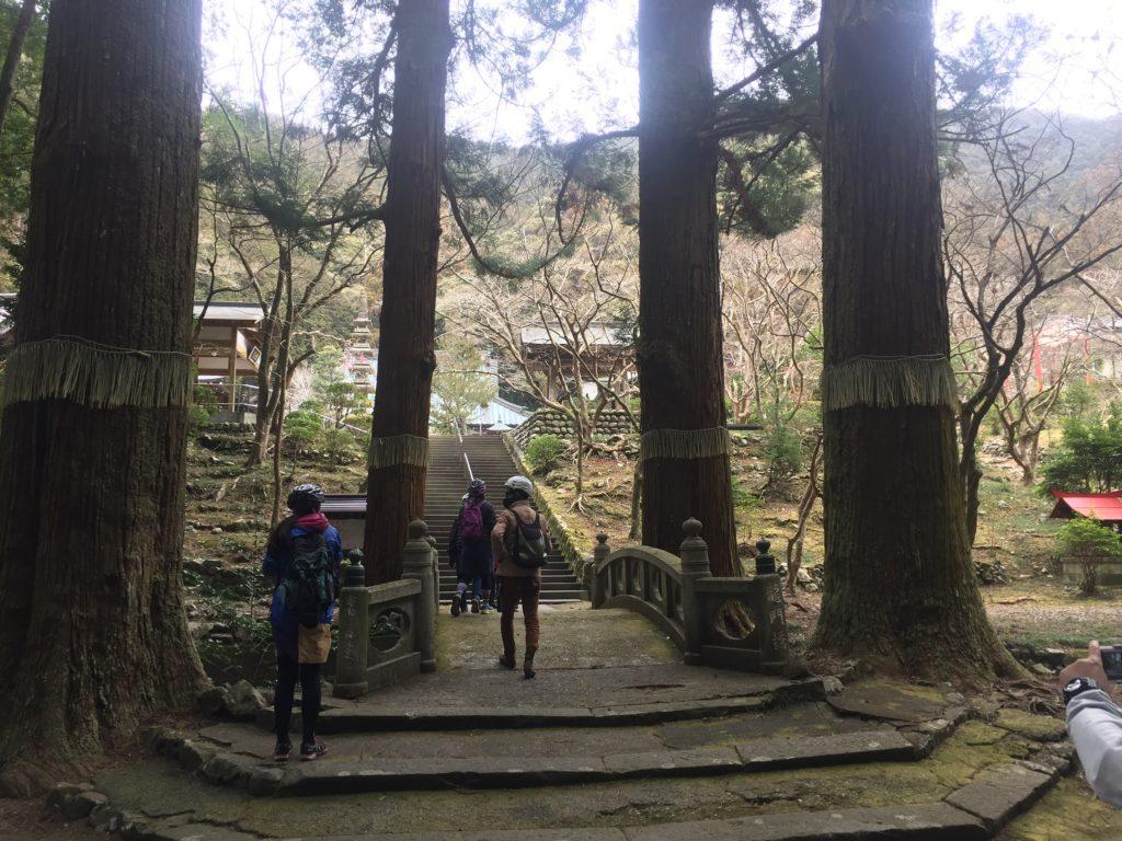 shizuoka bike tour