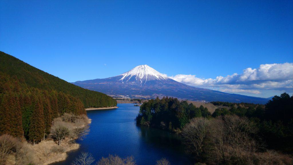 Lake Tanuki