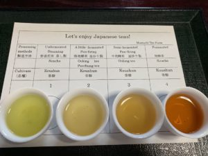 tea tasting experience in shizuoka